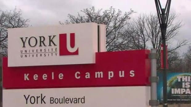 Labour ministry orders fact-finding review for York university strike
